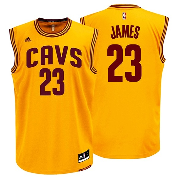 newest 97bc5 680c8 LeBron James Cleveland Cavaliers Jersey NWT